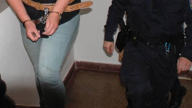 Dva lidé z Havlíčkobrodska skončili ve vazbě kvůli znásilnění dvouletého dítěte. Muž byl obviněn už na začátku května, matku, jež mu dítě poskytla a měla z toho mít finanční prospěch, vzal Okresní soud v Havlíčkově Brodě do vazby ve čtvrtek.