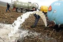 Zemědělci protestovali proti nízkým výkupním cenám. Jedním z míst v Česku, kde si výrobci mléka dali sraz, aby demonstrativně vylili tisíce hektolitrů mléka, byly i Puklice na Jihlavsku.