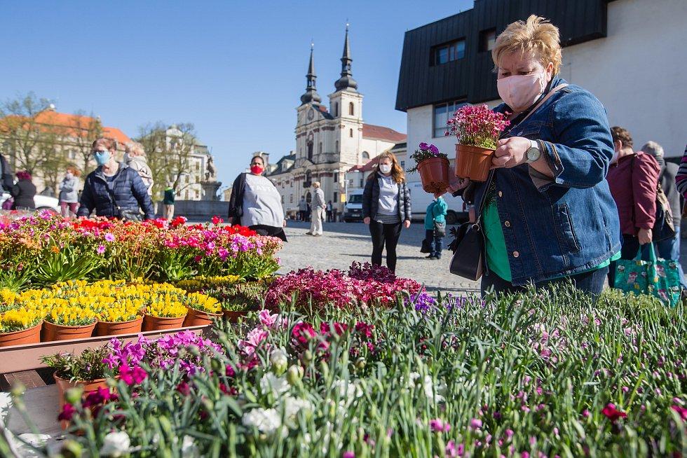 Farmářské trhy na Masarykově náměstí v Jihlavě.