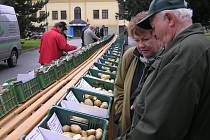 Letošní ročník tradičních bramborářských dnů bude plný novinek. Návštěvníky překvapí nová soutěž o nejlepší bramborovou pochoutku nebo Bramborové hody ve městě.