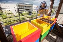 Tři nové včelí úly na střeše budovy Krajského úřadu Kraje Vysočina.