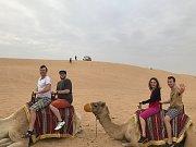 Desert safari.