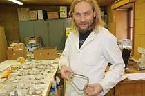 Konzervátor Muzea Vysočiny Jihlava Michal Daňa ukazuje třmen, který se našel  při loňském archeologickém výzkumu na dně vypuštěného Staroměstského rybníka v Telči. Na stole jsou vidět další předměty nalezené v Telči.