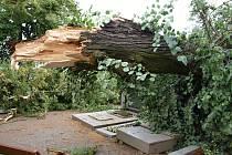 V Telči na hřbitově u svaté Anny zůstala po bouřce doslova spoušť. Některé náhrobky poničily větve ze stromů, které se poroučely k zemi.
