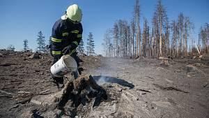 To Vysočina nepamatuje: 112 požárů, hoří v celém kraji