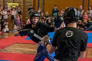 Jihlavští kickboxeři. Ilustrační foto.