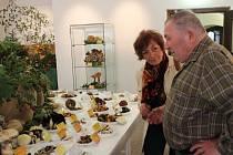 V Muzeu Vysočiny je ještě během soboty 19. září 2015 k vidění velká výstava hub.