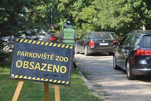 Parkoviště u jihlavské zoo bývá v létě často plné, řidiči musí hledat parkování jinde.