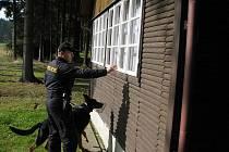 Policista se psem včera kontroloval, jak jsou zabezpečeny a zda nejsou vykradeny chaty v lokalitě u Jihlavy.
