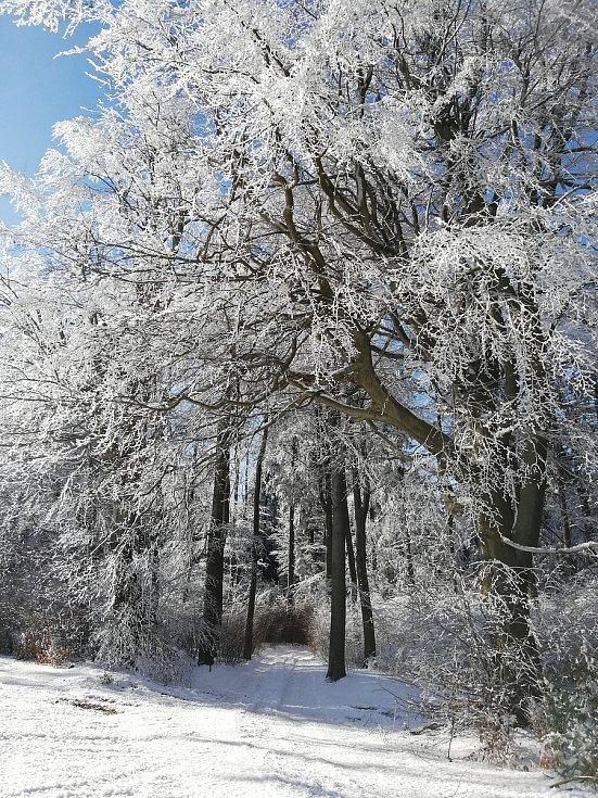 Zima stále čaruje. Foto: Soňa V.
