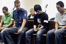 Thanh Hoang, Tho Nguyen Van a Hanh Nguyen Duc byli odsouzeni na šest a pět a půl roku do vězení za pěstování konopí ve výrobní hale v Třebíči.