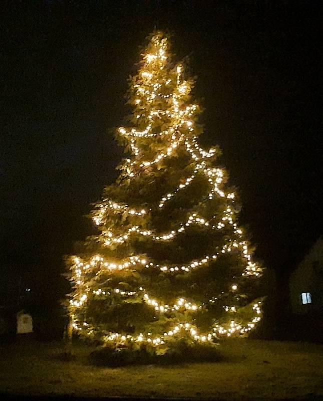 Vánoční strom ve Vysokém u Žďáru nad Sázavou.