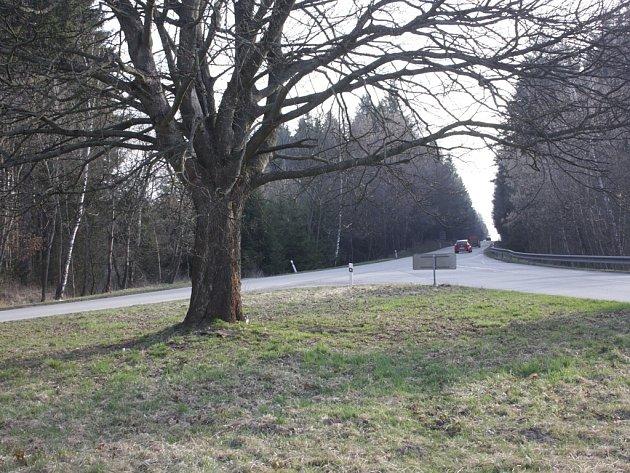 Křižovatka ještě se stromem, který připravil o život několik řidičů.