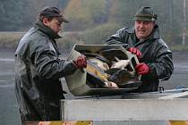 Příprava na zimu. V podzimních měsících absolvovali rybáři z Třeště několik výlovů. Na snímku technik rybářů Roman Navrátil (vlevo) a jeho kolega Radomír Šebesta.