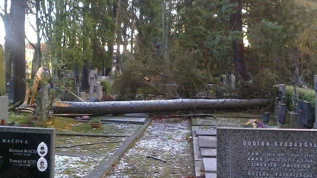 Takto vypadá jihlavský Ústřední hřbitov po nedělní vichřici.