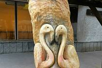 Dva havlíčkobrodští řezbáři vyřezali do odumřelých kmenů stromů v jihlavské zoologické zahradě ibise a plameňáky.