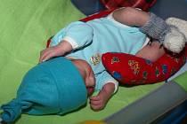 Dobrotety minulý týden obdarovaly nejmenší pacienty z dětského oddělení jihlavské nemocnice.