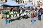 Tržnice na náměstí bývá oblíbená.