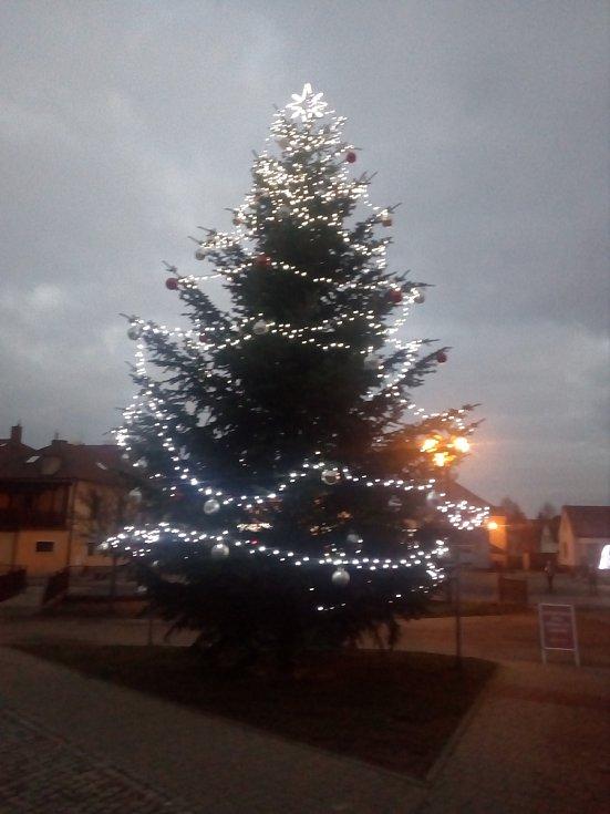 Vánoční strom v Lukách nad Jihlavou.