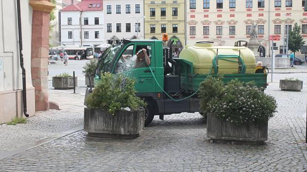 Zeleň v krajském městě Vysočiny si během léta žádá pravidelnou péči.