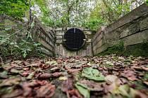 Do jihlavského potoka by se už neměly dostávat vlhčené ubrousky, plastový odpad ani další hygienické potřeby.