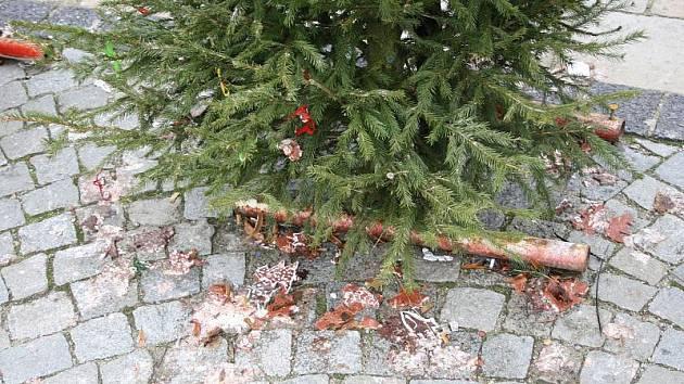 Vánoční stromečky na náměstí vydržely krásné jen chvíli. Na některých zbyly pouze mašličky, a ozdoby se povalují po zemi.