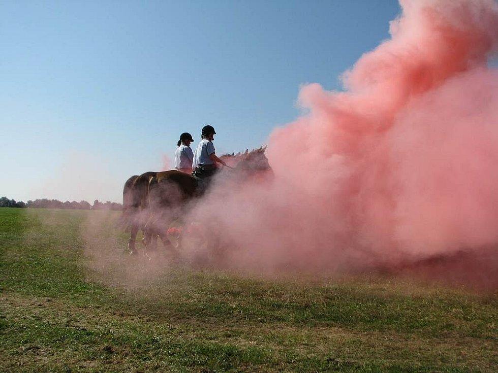 Koně v službách policie se nebojí ani dýmovnic, nebo třeba ohnivých překážek.