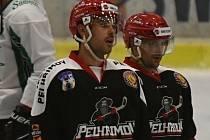 V nové Krajské lize Vysočiny by měli patřit k největším favoritům hokejisté Pelhřimova.
