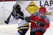 Malí hokejisté sváděli tvrdé souboje.