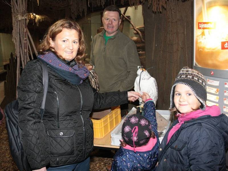 Den dravců a sov v Zoo Jihlava.