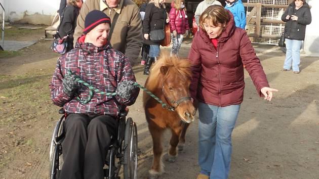 Pobavení. Akce v areálu Psychiatrické nemocnice v Jihlavě měla především pobavit uživatele charitní služby Adapta. Lidé, kteří jsou postižení, rozvíjeli nejen motorické schopnosti.