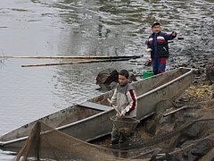 Kapři. Celou akci výlovu telčského Štěpnického rybníka bude provázet i prodej ryb.