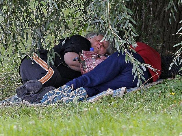 Matka Lněničková s dcerou byly koncem týdne k zastižení pod vrbou v parku, která se stala jejich dočasným domovem.