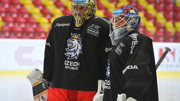 Trénink během přípravného kempu adeptů české hokejové reprezentace, 11. srpna 2019 na Horáckém zimním stadionu v Jihlavě.