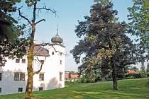 Turisté na naučné stezce podél zámeckého parku v Třešti poznají osobnosti historie a děti se i pobaví.
