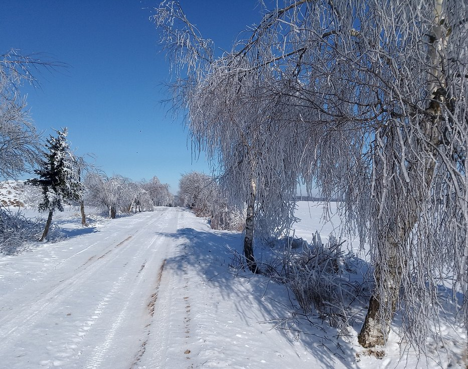 Zima stále čaruje. Foto: Martina Havlíčková