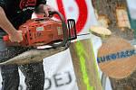 Třetí závod dřevorubeckých sportů Eurojack se uskutečnil o víkendu v Jihlavě.