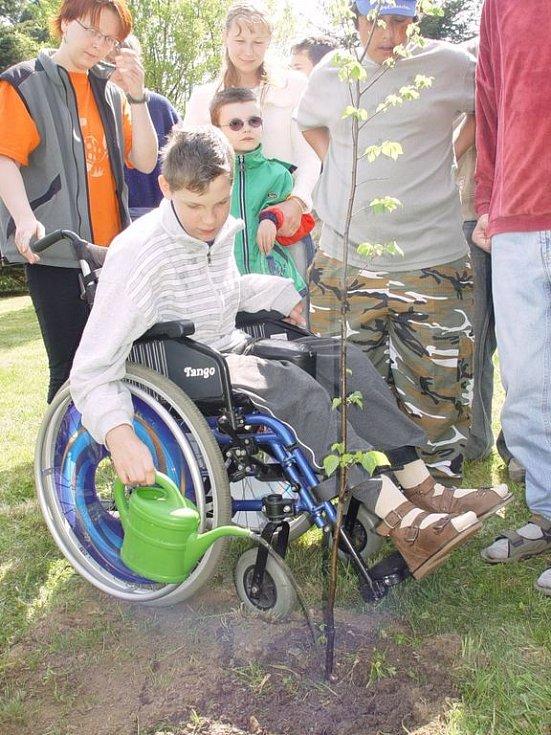 Pořadatelé akce spolu s Lesy ČR zasadili společně s dětmi ze speciální školy Březinova mladý jilm, jako znamení boje o návrat zeleně do krajiny.