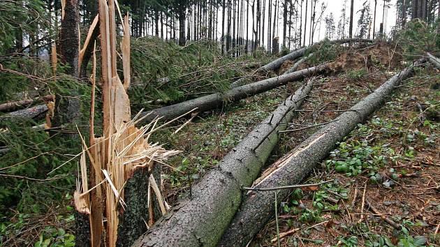 Spoušť. V lednu 2007 řádil nad Evropou orkán Kyrill . Na Vysočině vítr sílil od podvečera 18. ledna.
