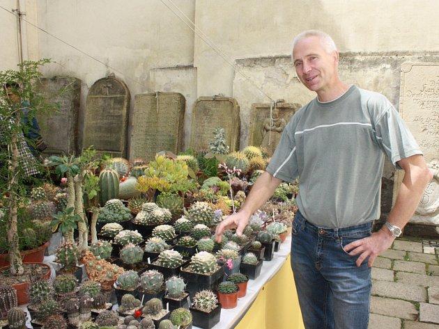 Pěstitel Václav Navrátil ukazuje na kaktus, jehož výtažky se povzbuzují indiáni v Americe.