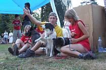 Tradiční závod tažných psů Hafan 007 se v sobotu a neděli uskutečnil v Telči s podtitulem Život se psem není pod psa. Zvířata soutěžila ve třech disciplínách, kdy pes táhne závodníka jako běžce, koloběžkáře či cyklistu.
