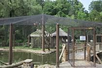 Návštěvníci jihlavské zoo mají možnost se k ptačím obyvatelům dostat skutečně blízko. Na podzim by měl tuto expozici doplnit i v současné době budovaný tropický pavilon.