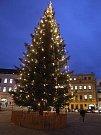 Vánoční strom v Třebíči.
