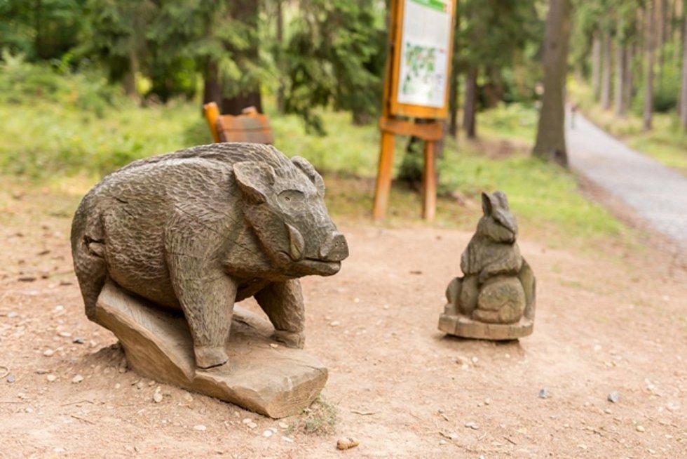 Na domácí turisty cílí kampaň Vysočina dětem 2021, kterou od začátku července spustil portál Vysočina tourism.