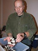 Vlastimil Jakoubek nabízel na terarijních trzích v Jihlavě příchozím například šváby.