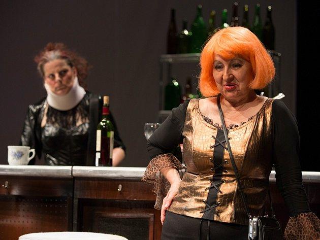 Taťjana Schottnerová (vpravo) opouští kmenovou sestavu Horáckého divadla po čtyřech desítkách let. Vedení divadla však počítá s tím, že bude v některých hrách hostovat.