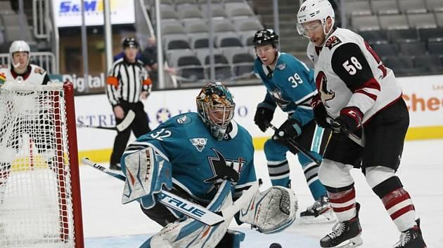 Brankář San Jose Josef Kořenář v utkání proti Arizoně, ve kterém si připsal svoji první výhru v NHL. V příští sezoně bude oblékat dres právě Arizony.