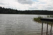 Borové a smrkové lesy sahají až na břehy Černého rybníka, který reguluje a zadržuje přítok vody do Smrčenského potoka.