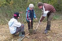 Bez rozdílu věku sázeli stromky v Jihlavě u obchvatu směrem na Znojmo. Třicítka nadšenců vyhrabala třiceticentimetrovou jámu a do ní stromy zasadila.
