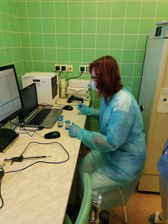 Testování na Covid-19 na Vysočině. Ilustrační foto.